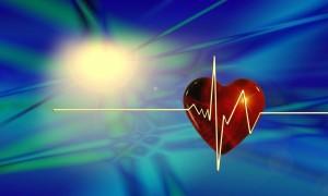 Herz, Medizin